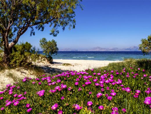 Kos in Spring – The Best Season to Discover Kos Island